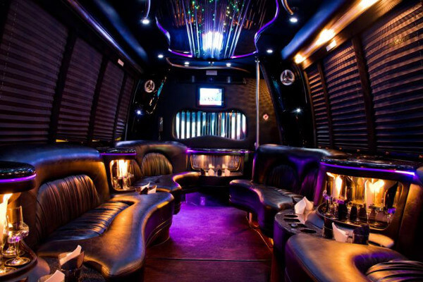 15 Person Party Bus Rental San Diego