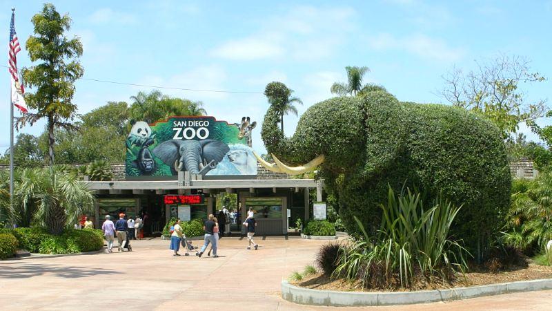 Limo Service San Diego Zoo